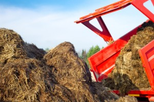 image of a dump truck leaving behind a pile of manure