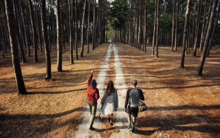 Group walking down a trail