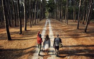Group walking down a trail