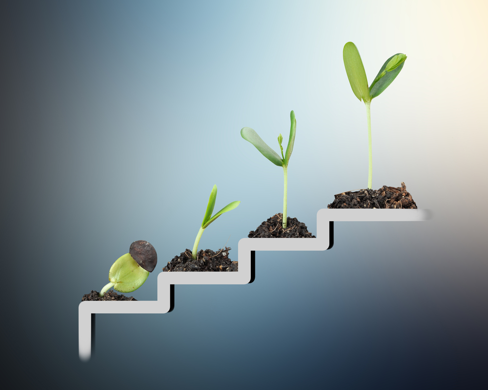 Image of stairs with seedlings growing larger on each stair